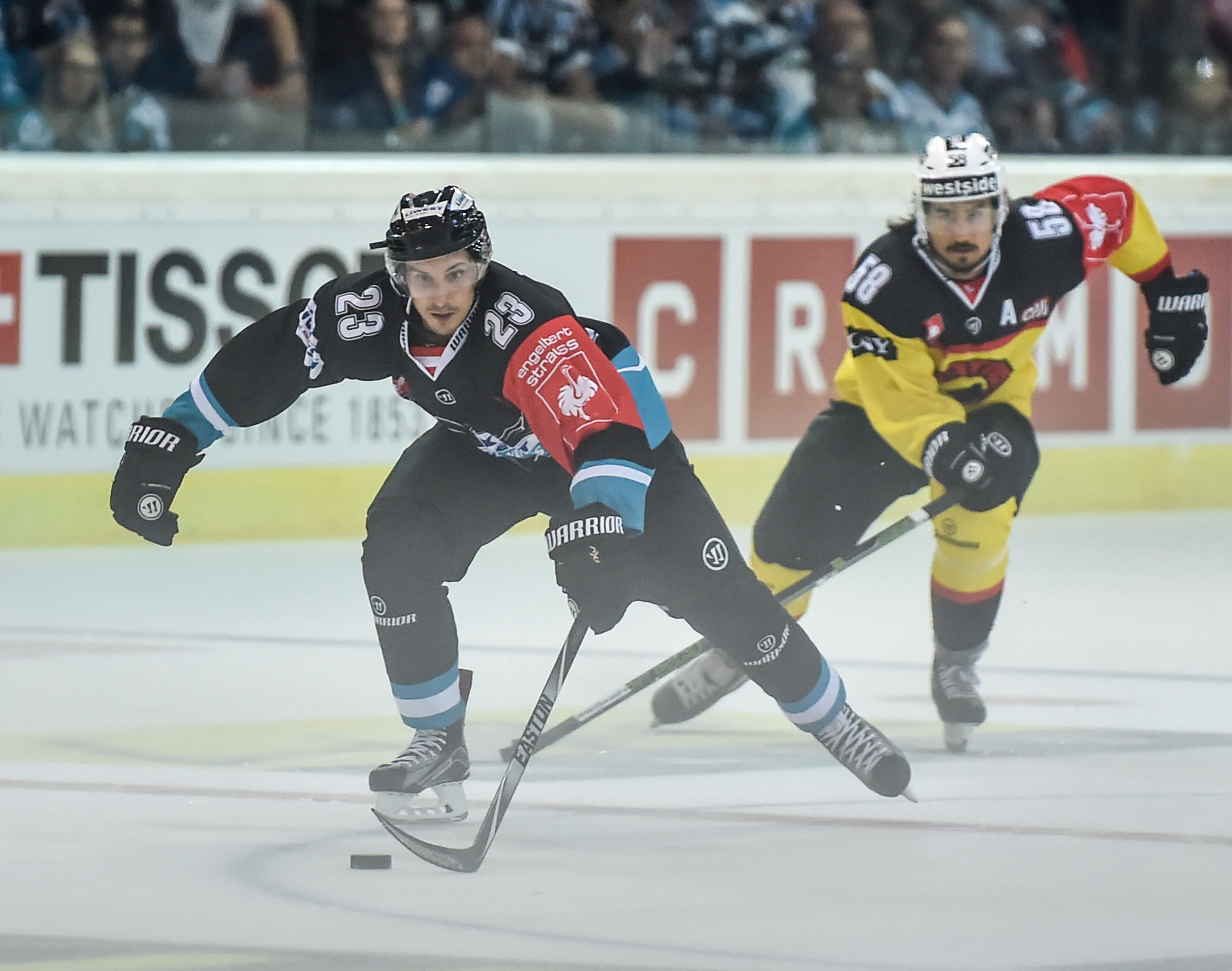 AUT, CHL, Liwest Black Wings Linz vs SC Bern