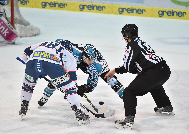 AUT, EBEL, Liwest Black Wings Linz vs Sapa Fehervar AV 19