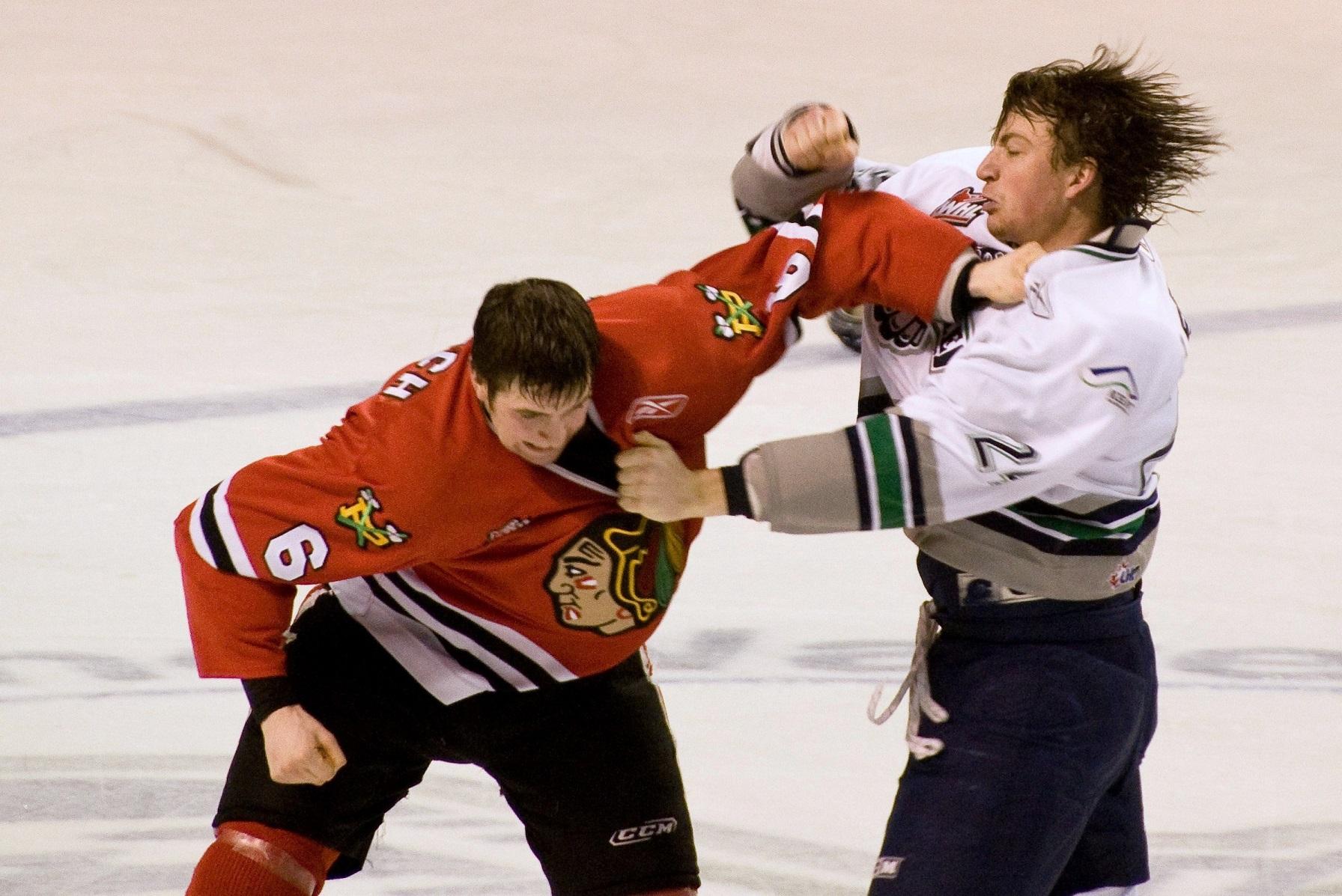 Fight_in_ice_hockey_2009